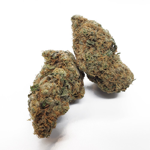strawberry cough mail mary strain