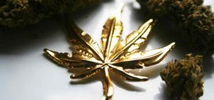 gold mail mary leaf