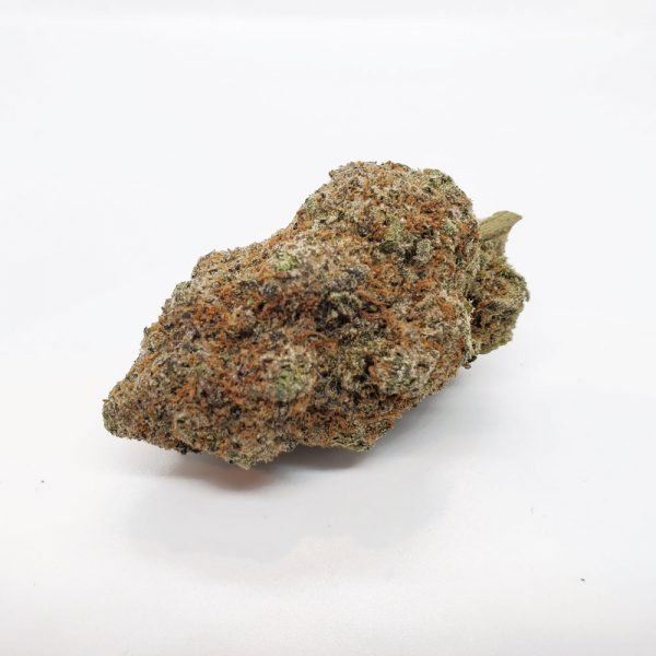 blue coma mail mary weed quad