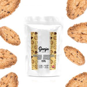 oatmeal chocolate chip edible mail mary