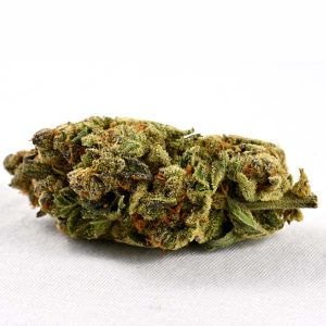 cherry larry strain canada delivery